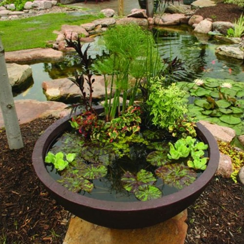 Aquatic Patio Ponds