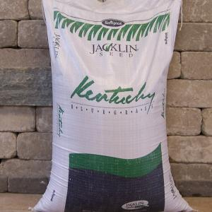 Kentucky Blue Grass Seed
